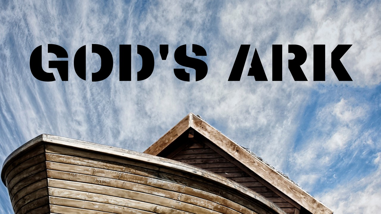 God's Ark - Cover Image
